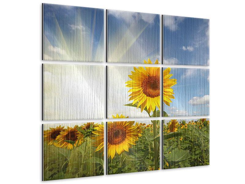Metallic-Bild 9-teilig Sonnenblumen im Sonnenlicht