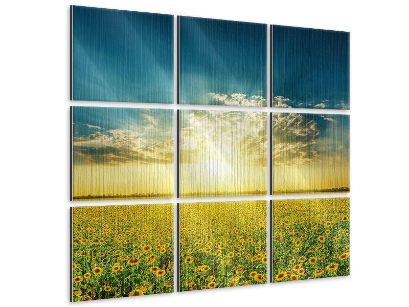 Metallic-Bild 9-teilig Sonnenblumen in der Abendsonne