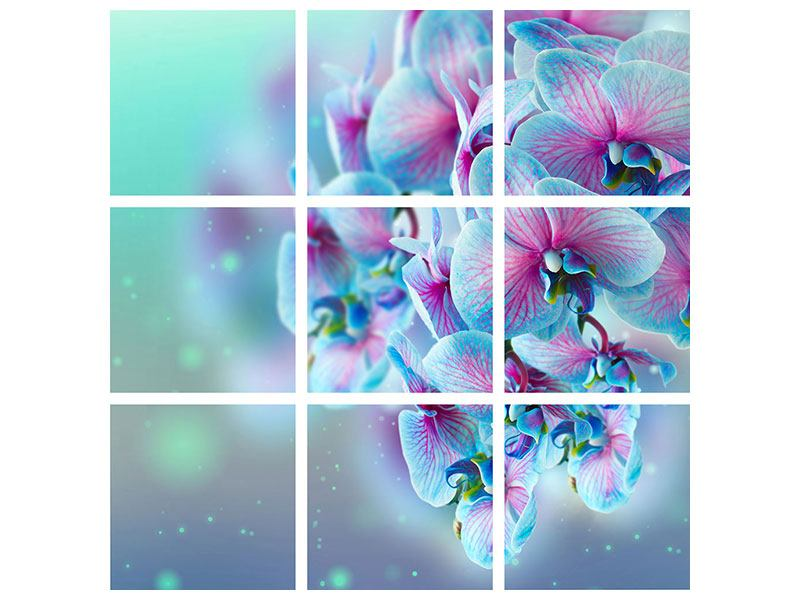 Metallic-Bild 9-teilig Farbige Orchideen
