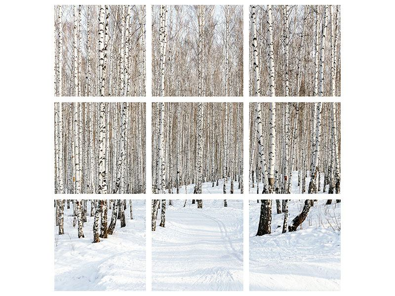 Metallic-Bild 9-teilig Birkenwald-Spuren im Schnee