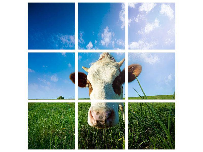 Metallic-Bild 9-teilig Die Kuh