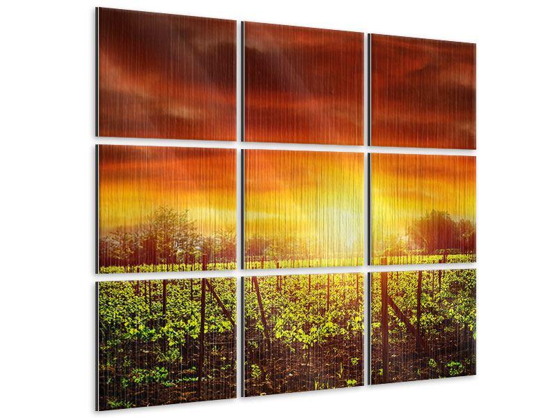 Metallic-Bild 9-teilig Der Weinberg bei Sonnenuntergang