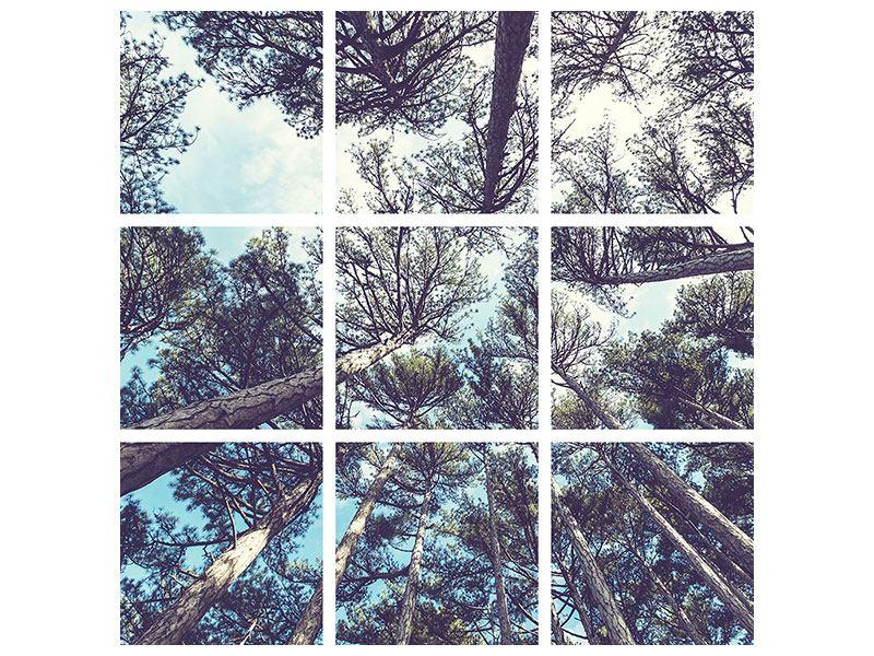 Metallic-Bild 9-teilig High in the Sky