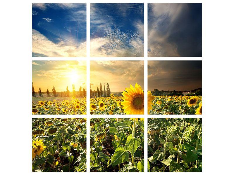 Metallic-Bild 9-teilig Sunny Flowers