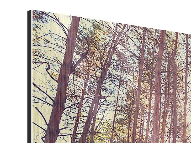 Metallic-Bild 9-teilig Licht am Ende des Waldweges