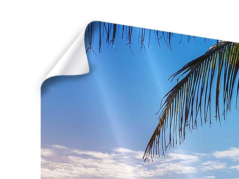 Poster Panorama Sandkörner
