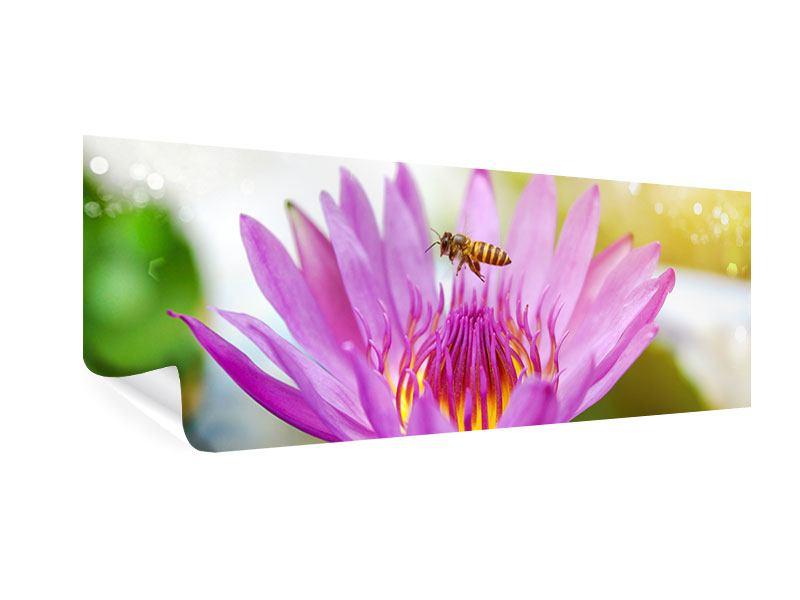 Poster Panorama Die Lotus mit Biene