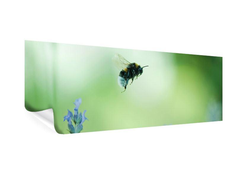 Poster Panorama Die Biene