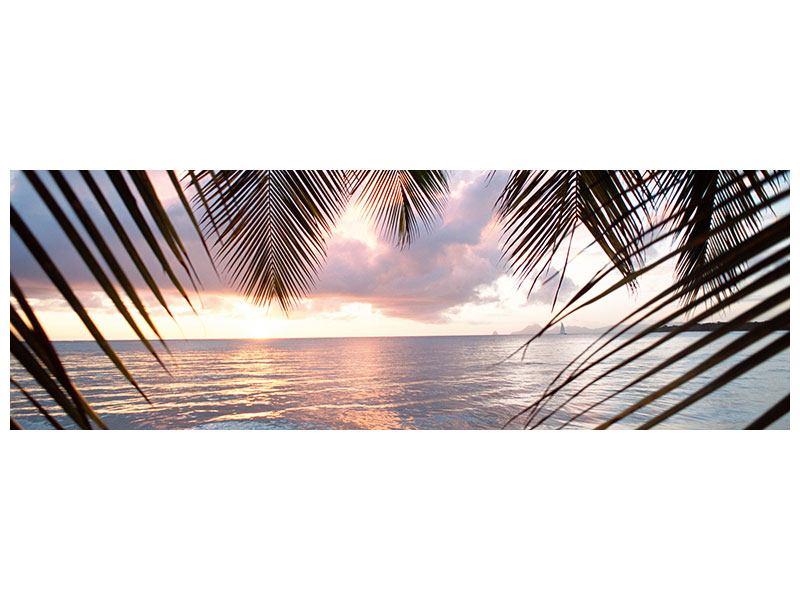 Poster Panorama Unter Palmenblätter