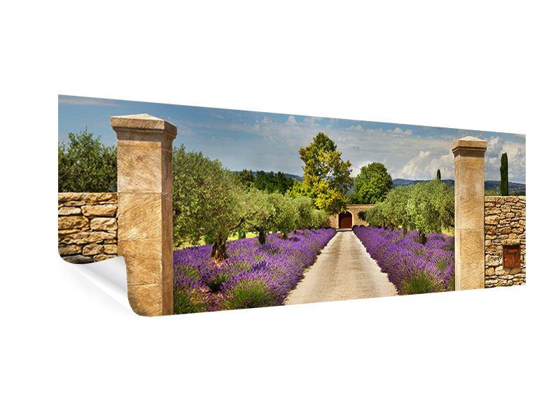 Poster Panorama Lavendel-Garten