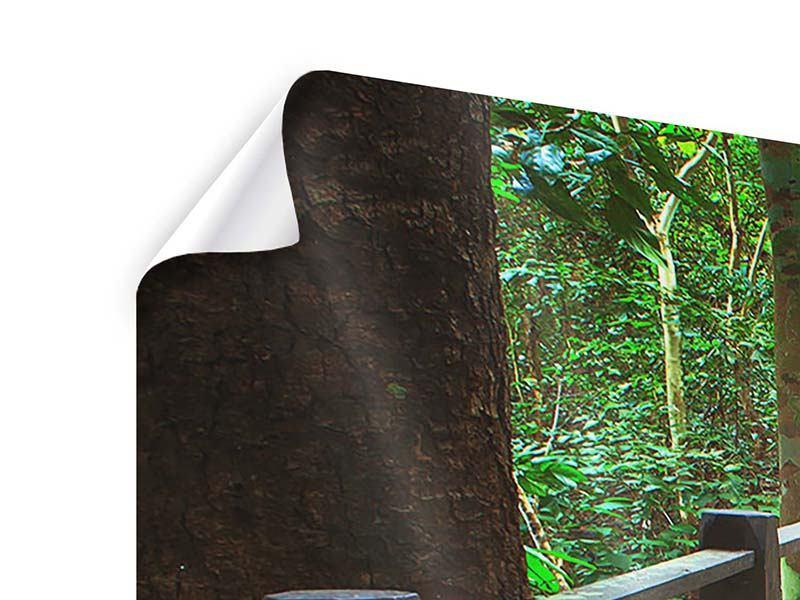 Poster Panorama Die Brücke im Wald