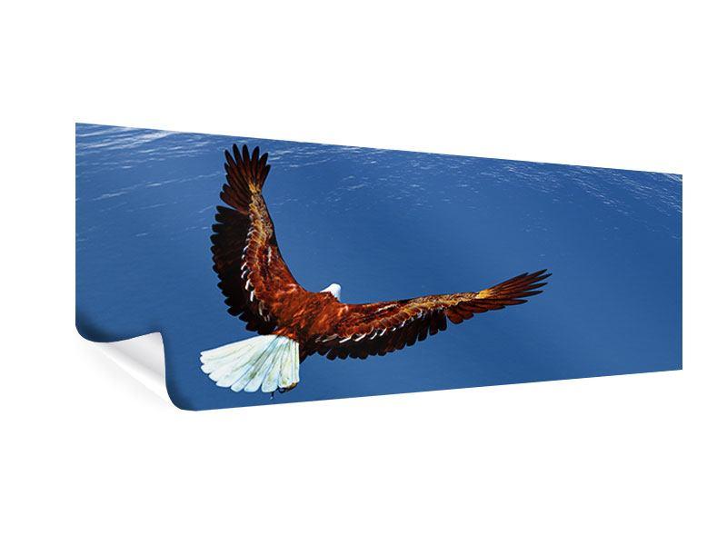 Poster Panorama Der Adler