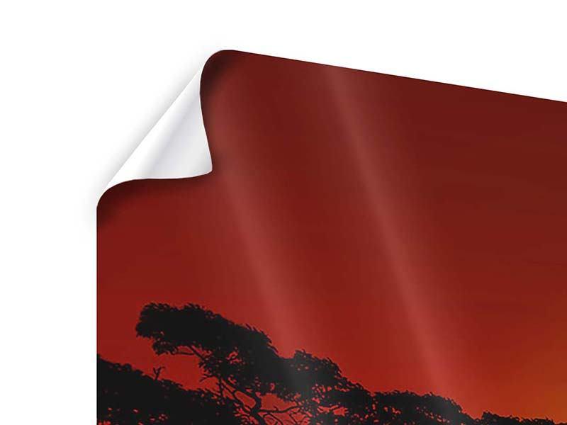 Poster Panorama Afrikanische Steppenelefanten