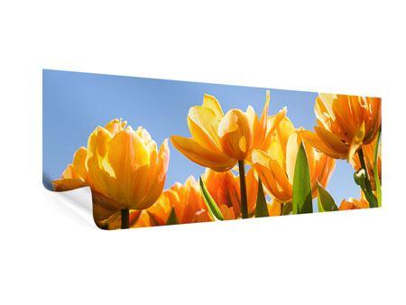 Poster Panorama Märchenhafte Tulpen