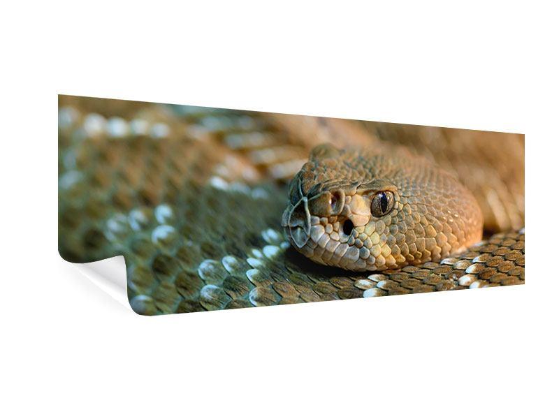 Poster Panorama Viper