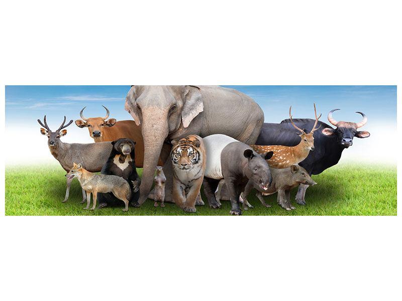 Poster Panorama Warten auf die Arche Noah