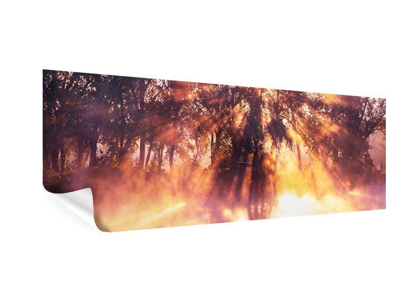 Poster Panorama Die Waldspiegelung