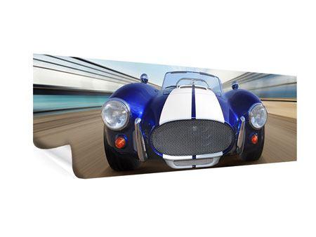 Poster Panorama Rennwagen