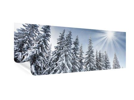 Poster Panorama Wintertannen