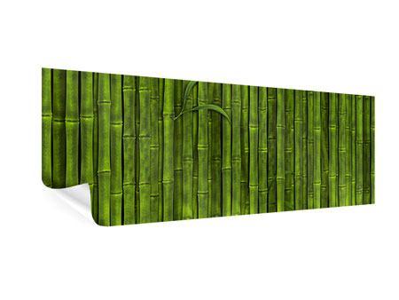 Poster Panorama Wasserspiegelung Bambus