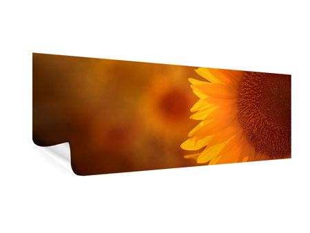 Poster Panorama Macro-Sonnenblume