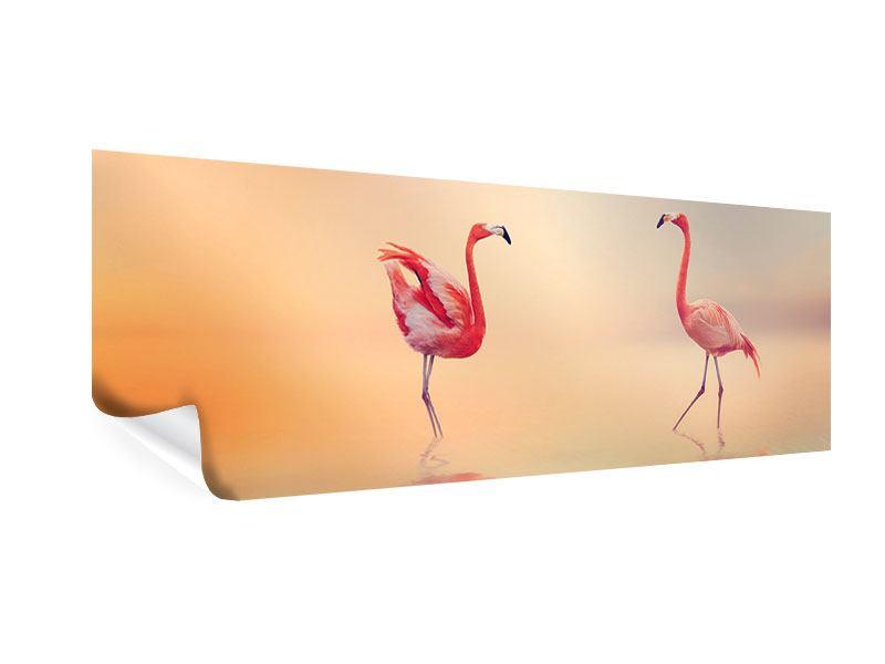 Poster Panorama Romantische Flamingos