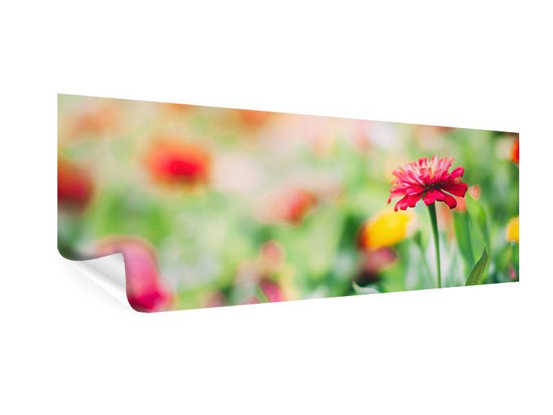 Poster Panorama Im Blumengarten
