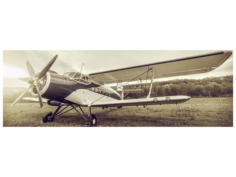 Poster Panorama Nostalgisches Flugzeug im Retrostyle