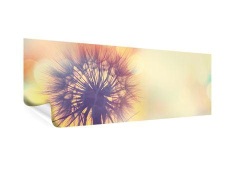 Poster Panorama Die Pusteblume im Licht