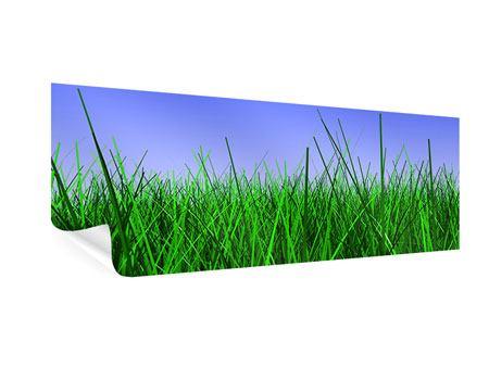 Poster Panorama Im Gras