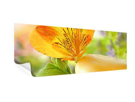 Poster Panorama Lilien-Frühstück