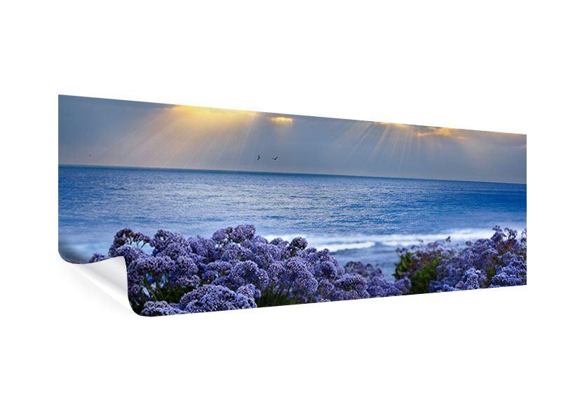 Poster Panorama Der Lavendel und das Meer