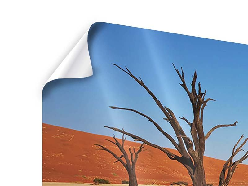 Poster Panorama Wüste