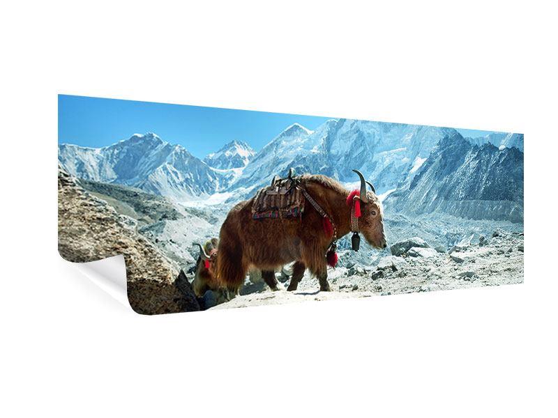 Poster Panorama Das Himalaya-Gebirge