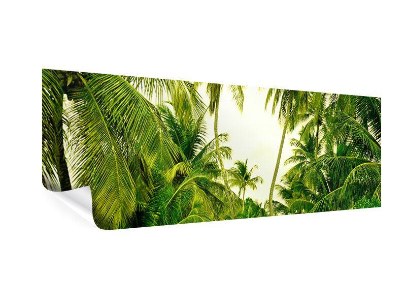 Poster Panorama Reif für die Insel