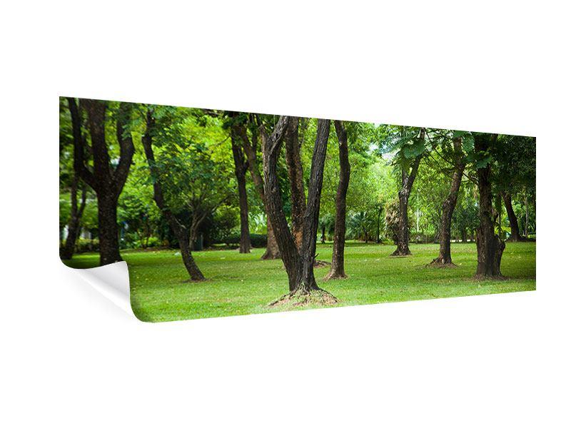 Poster Panorama Kirschbaum-Garten