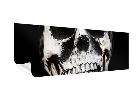 Poster Panorama Skull
