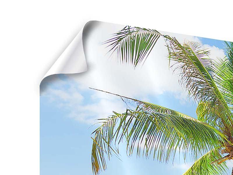 Poster Panorama Die eigene Insel
