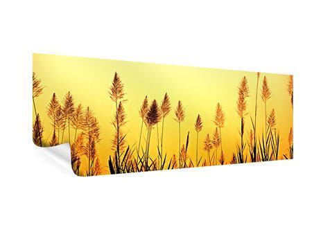 Poster Panorama Die Blumen des Feldes