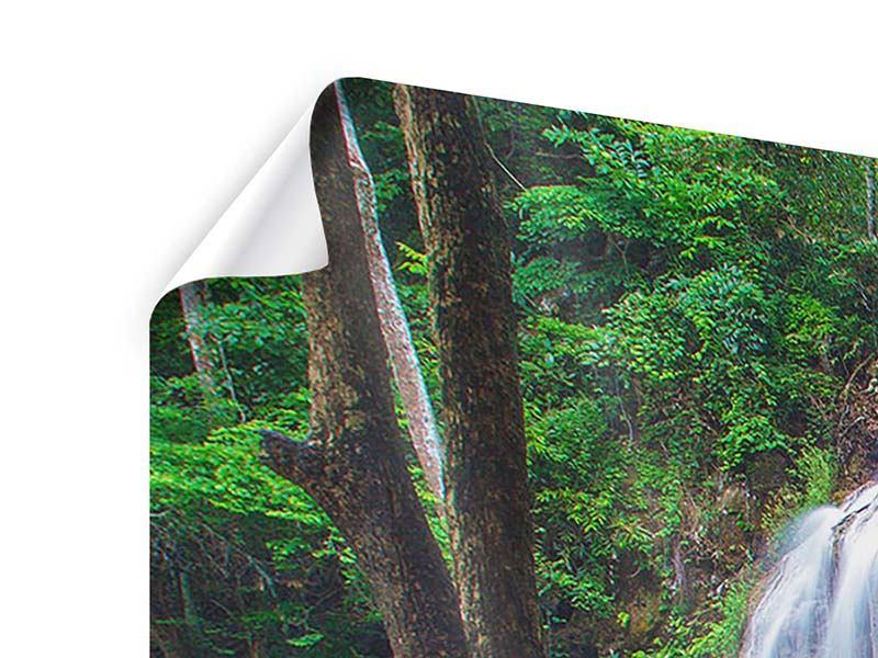 Poster Panorama Naturerlebnis Wasserfall