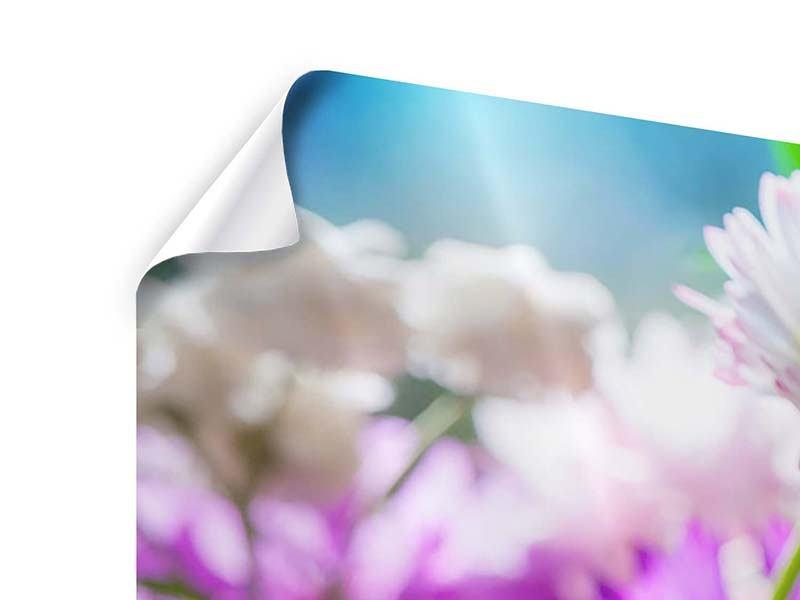 Poster Panorama XXL Gartenblumen
