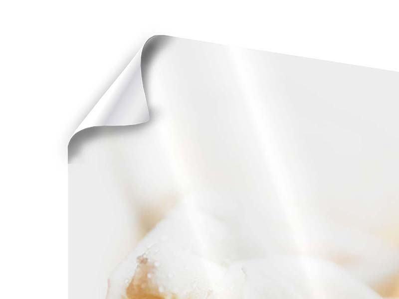 Poster Panorama Rosenperspektive