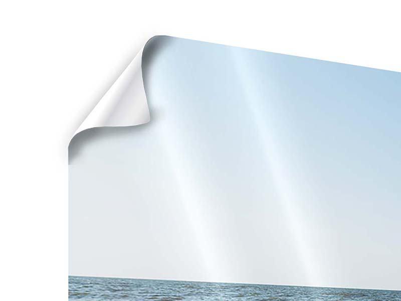 Poster Panorama Sandspuren