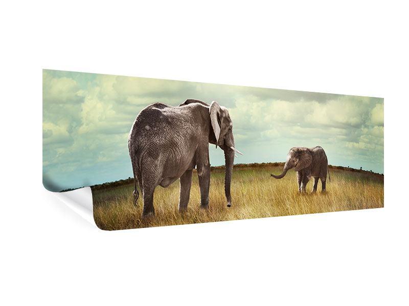 Poster Panorama Elefanten und Feng Shui