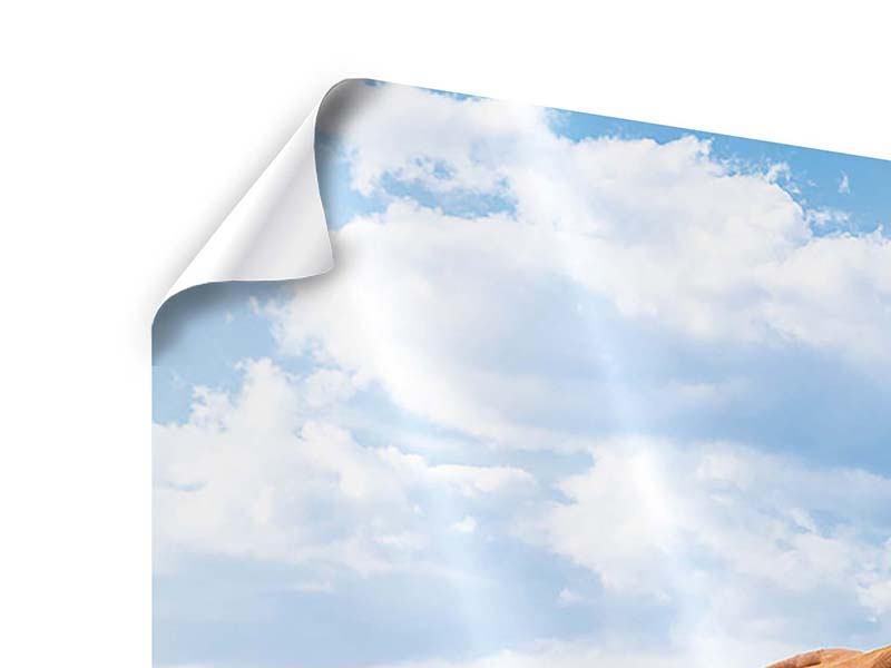 Poster Panorama Auf der Alm