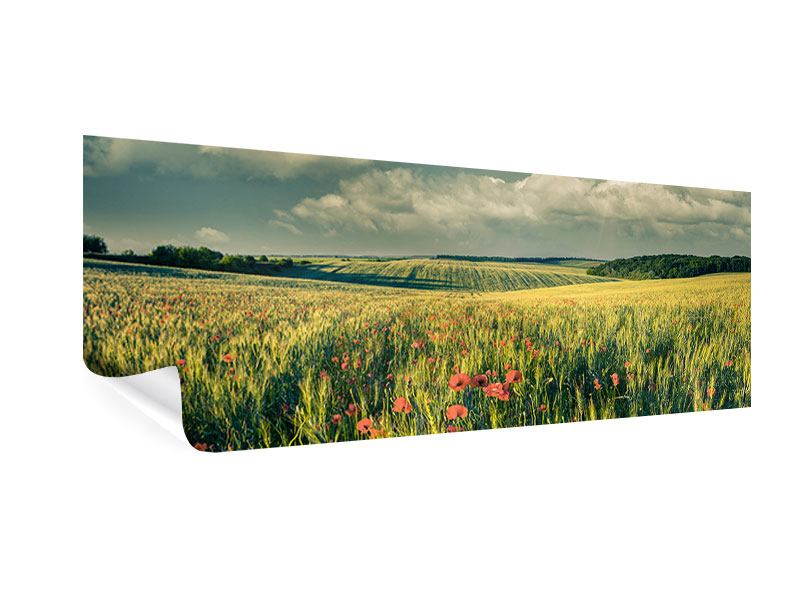 Poster Panorama Der Mohn im Weizenfeld