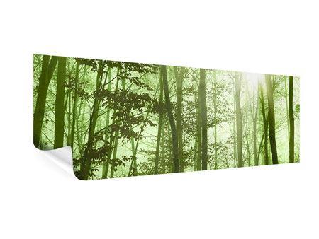 Poster Panorama Nibelungenwald