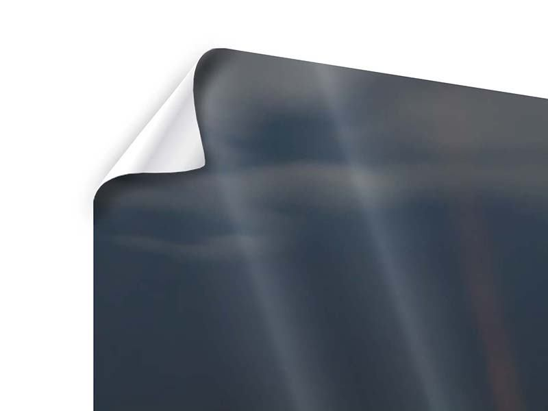 Poster Panorama Seerose in der Abenddämmerung