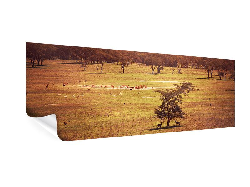 Panoramic Poster Picturesque Africa