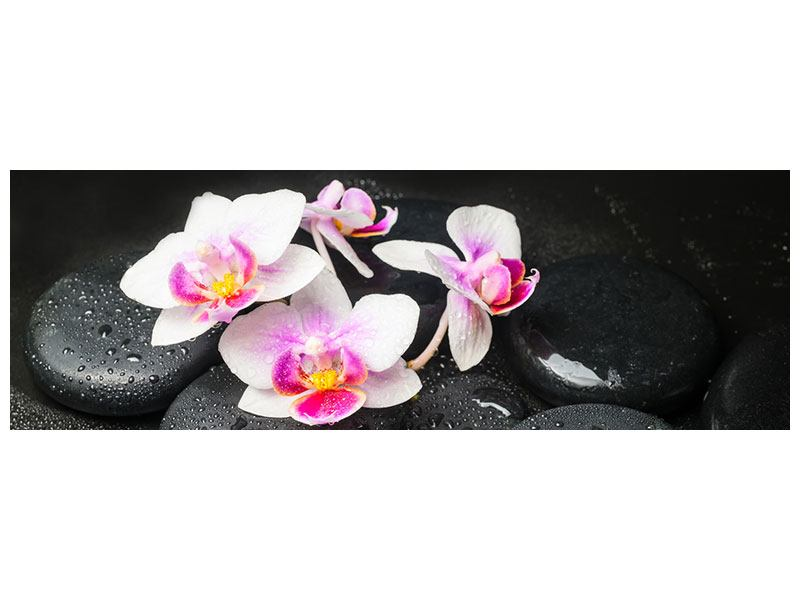 Poster Panorama Feng-Shui-Orchidee Zen